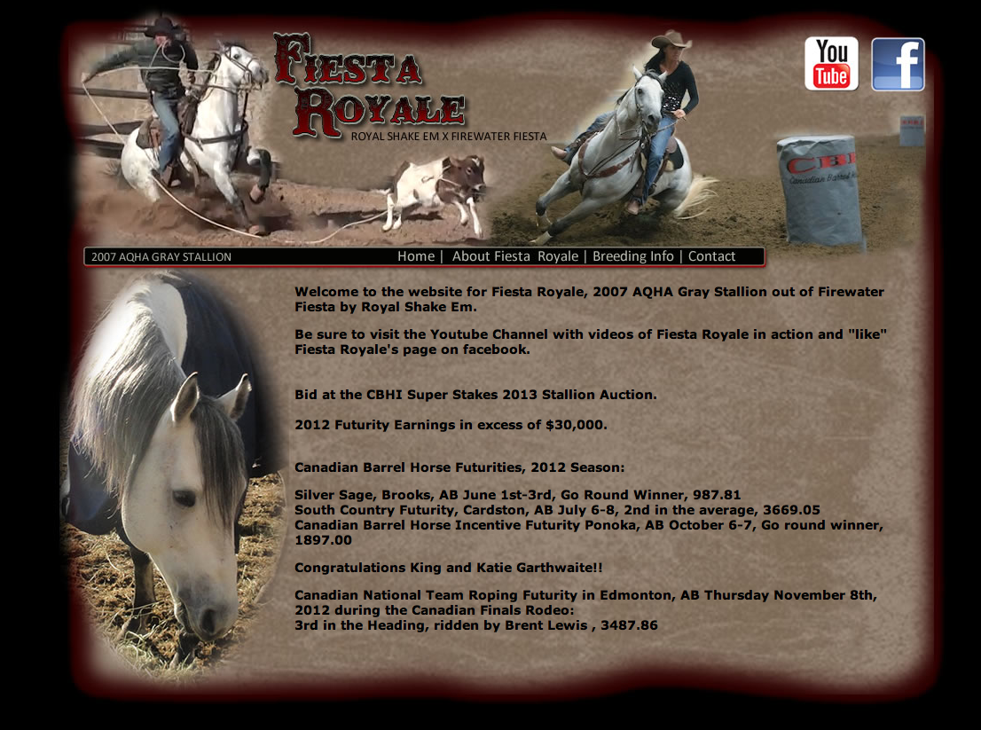 Fiesta Royale Gray Stallion