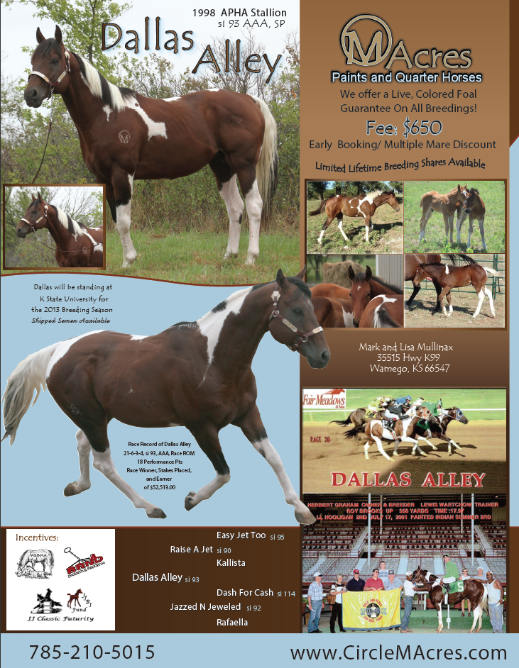 Circle M Acres Stallion Flyer