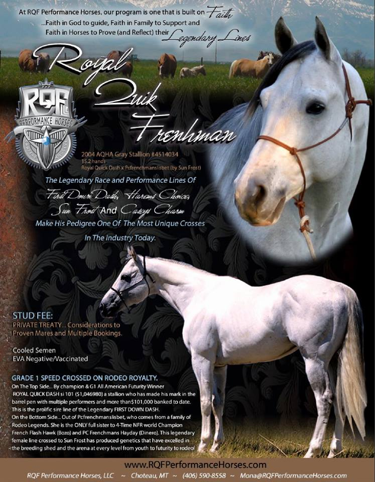 RQFperformancehorses.com